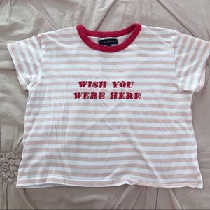 Pacsun Cropped Striped Pink Red Embroidery Tshirt
